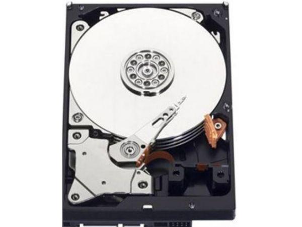 1 TB Western Digital Harddisk