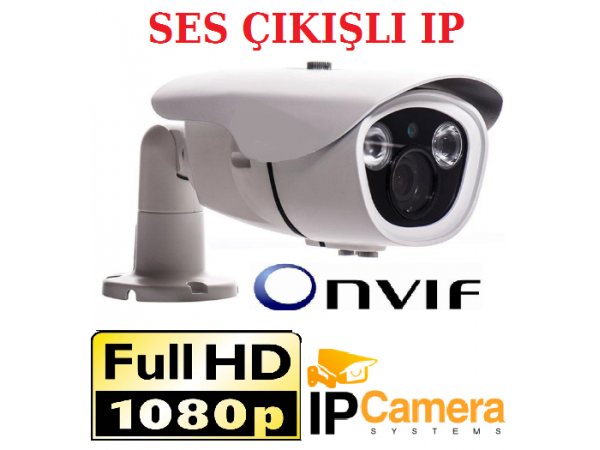 2MP 1080P İki Duble  Atom Led Ses Girişli  Bullet IP Güvenlik Kamerası AR-5243